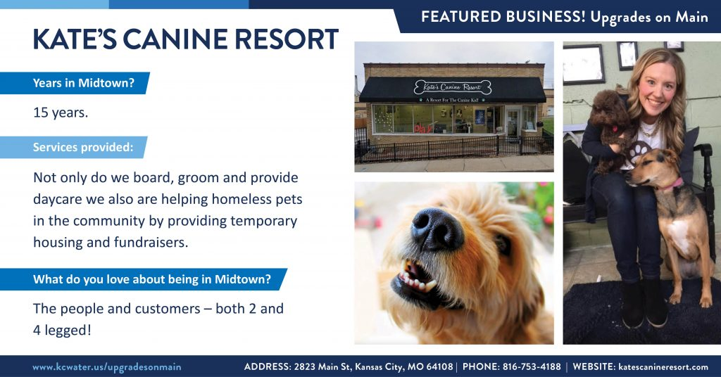 Featured Business of the Week - Kate's Canine Resort